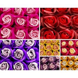 Trandafiri de sapun bicolor - 50 buc / cutie